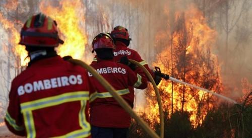 Ajudar os Bombeiros sai grátis no Suplementos24