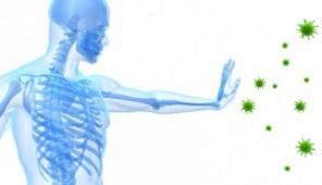 Reforço do sistema Imunitário